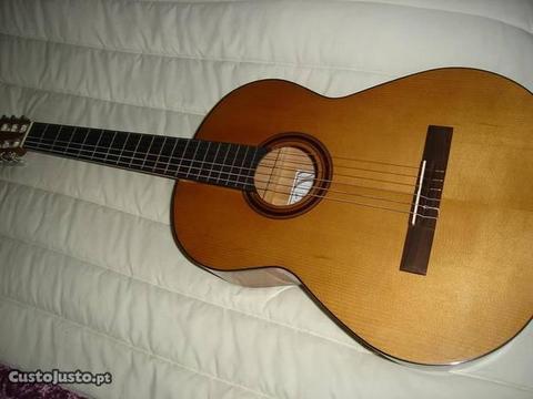 Guitarra APC