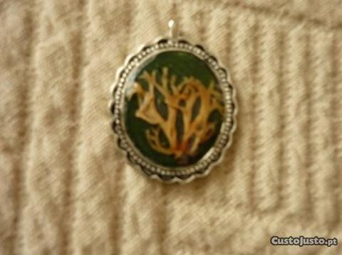 Medalhão com plantas naturais - 1